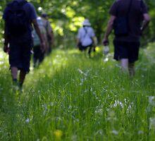 Hiking in Kopacki Rit - Croatia by jjshoots
