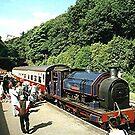 Haverthwaite Railway Station, Lake District, Cumbria. by Roy  Massicks