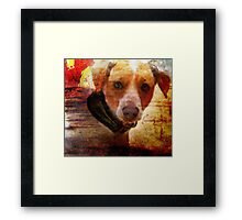 Don't You Love Me Anymore? Framed Print