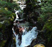 Avalanche creek 1 by Borror