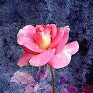 Rosy Greetings by Sheryl Kasper