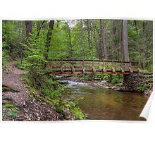 Evergreen Trail Footbridge Poster