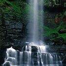 Belmore Falls by Adam  Smith