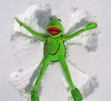 Kermit Snow Angel (1st place Boston Globe) by David Tiller