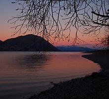 Lake Pukaki by Paula McManus