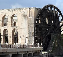Water wheel in Hama, Syria by tmyusof