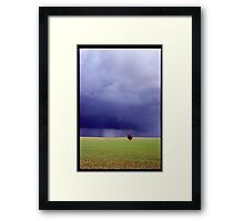 Coming Rain, Mallee Framed Print