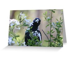 Can you see me! Greeting Card