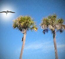 Twin Palms by Rosalie Scanlon