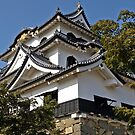 Hikone Castle, Lake Biwa, Japan. by johnrf