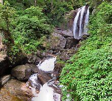 SRI LANKAN WATERFALLS. 3 by ronsaunders47