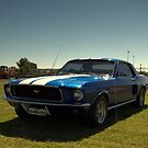 american  muscle in ireland by TIMKIELY