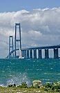 Bridges in Denmark - Great Belt Bridge by imagic