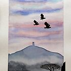 Lapwings over Glastonbury. by Robert David Gellion