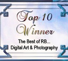 Best of RB Top Ten banner by rocamiadesign