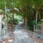 Welcome to Paradise; South Shore, Bermuda by Amaterasu