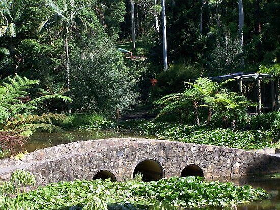 Bridge in the Botanical Gardens by Matthew Sims