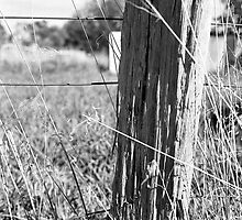 Fence Post - Country Victoria by DonovanTM