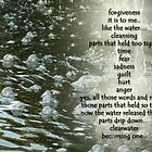 clearwater... by aspectsoftmk