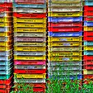 Stacked  by Jennifer Hulbert-Hortman