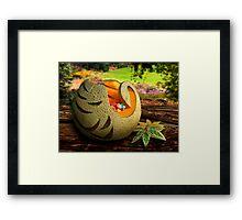 Exotic Melons 2  Framed Print