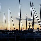 Sailboats at Sunset- Balboa Island, CA by Alima  Ravenscroft