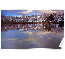 """""""Reflections at Evandale"""" Poster"""