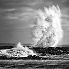 PHILIP ISLAND BLOWHOLE by Joseph Darmenia