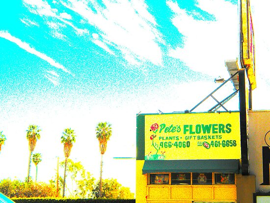 pete's flowers by shannonybaloney