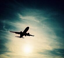 Plane at sunset by dazb