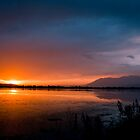 Golden Evening - Dal Lake ,Srinagar Kashmir by indianbsakthi