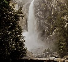 Lower Yosemite Falls by Phillip M. Burrow