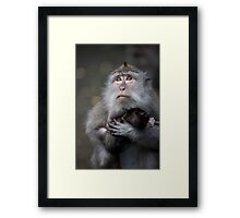 My Baby is precious Framed Print