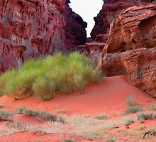 Wadi Rum Desert in Jordan - green and red by InterfaceImages