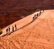 Racing to the top of a sand dune by InterfaceImages