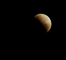 Lunar Eclipse 26-06-10 by Gryphonn