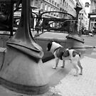 Paris - Dog on the street # 9 by Jean-Luc Rollier