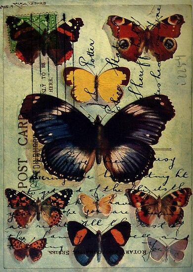 Postcard Butterflies by Sarah Vernon