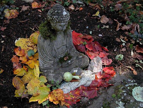 Buddha Mandala  by Mona Shiber