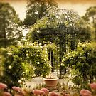 Rose Arbor by Jessica Jenney