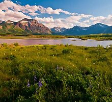 Waterton Lakes International Peace Park, Montana/Alberta Border by Albert Dickson