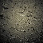 Raindrops in an Oily Puddle, West Sumatra by Ashlee Betteridge