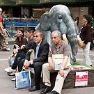 Elephant, I Don't See An Elephant ! by phil decocco