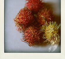 Rambutan Polaroid by Ashlee Betteridge
