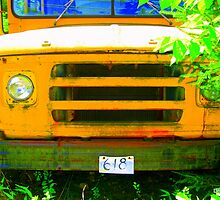 Retired School Bus Front by Debbie Robbins