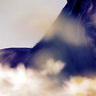 30.6.2010: Dream of Horse I by Petri Volanen