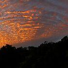 Sunrise Panorama by nikonplasma