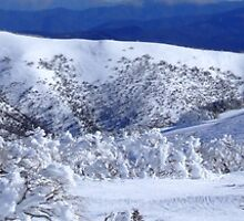 """The Orchard"" area at Mt Hotham by Charles Kosina"