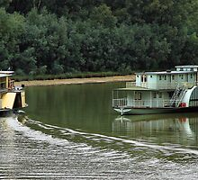 Cruising the Murray by Stephen Ruane