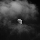 THE TWILIGHT SAGA: ECLIPSE  by ©Maria Medeiros
